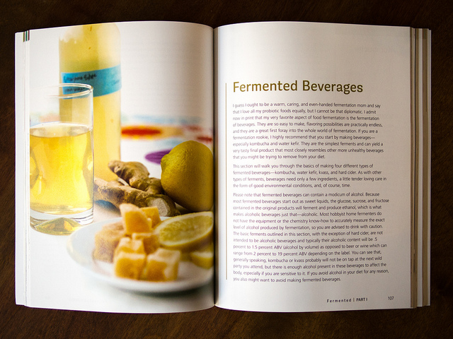 Fermented_Book_Review_2