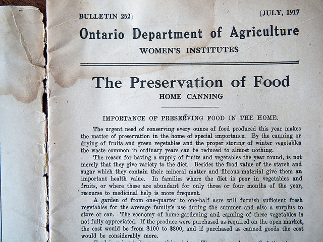 preserving_looked_like-1917