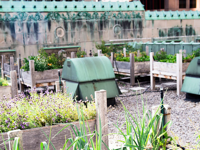 Royal_York_Rooftop_Garden_Toronto_4